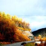 droga-w-norwegii