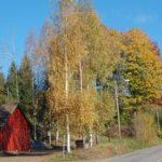 droga-wiejska-norwegia