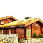 hytte-norwegia-snifljord