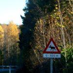 los-znak-norwegia