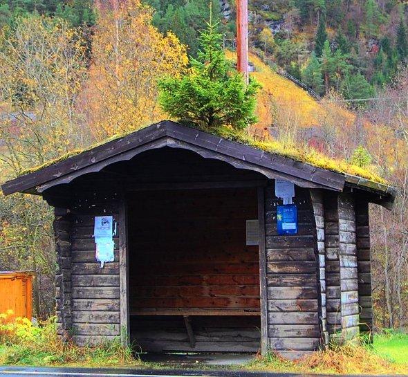 norweski przystanek gdzieś w trasie do Trondhaim