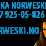 nauka-norweskiego-kursy-i-warsztaty